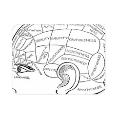 Brain Chart Diagram Face Fringe Double Sided Flano Blanket (mini)