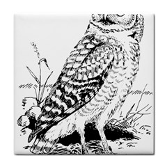 Animal Bird Forest Nature Owl Tile Coasters
