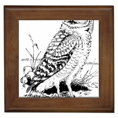Animal Bird Forest Nature Owl Framed Tiles