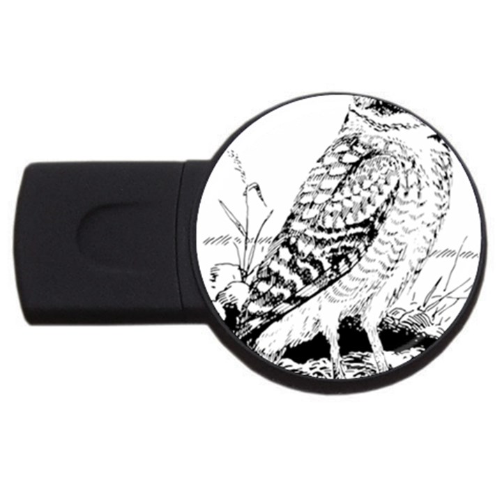 Animal Bird Forest Nature Owl USB Flash Drive Round (2 GB)