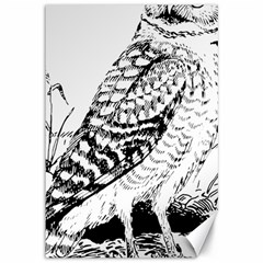 Animal Bird Forest Nature Owl Canvas 12  X 18