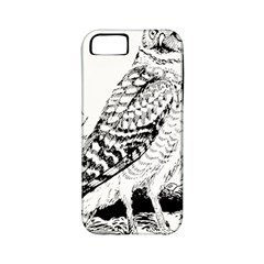 Animal Bird Forest Nature Owl Apple Iphone 5 Classic Hardshell Case (pc+silicone)
