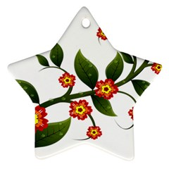 Flower Branch Nature Leaves Plant Ornament (star)