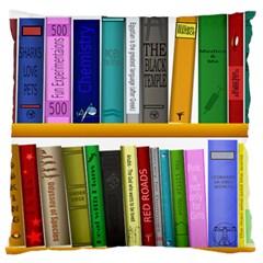 Shelf Books Library Reading Large Flano Cushion Case (two Sides)