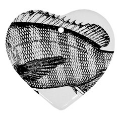 Animal Fish Ocean Sea Heart Ornament (two Sides)