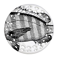 Animal Fish Ocean Sea Round Filigree Ornament (two Sides)