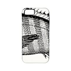 Animal Fish Ocean Sea Apple Iphone 5 Classic Hardshell Case (pc+silicone)