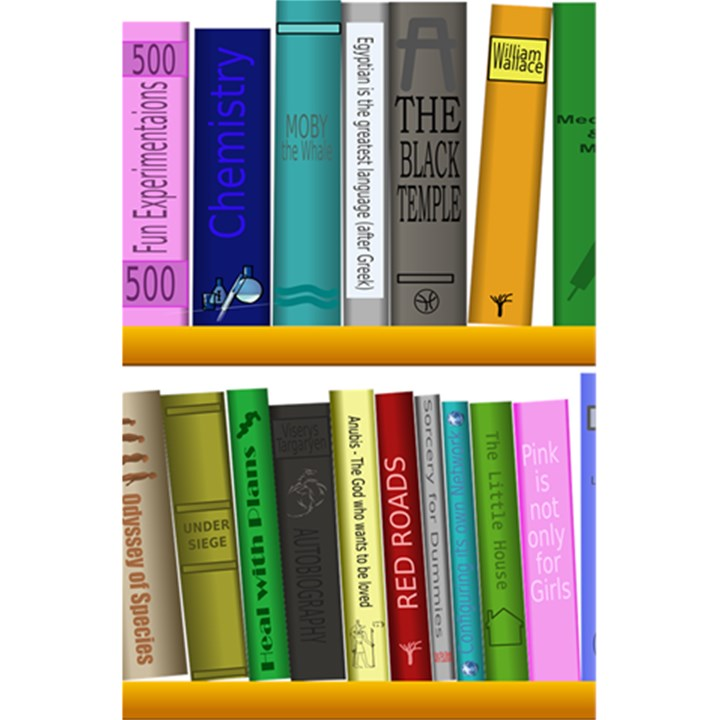 Shelf Books Library Reading 5.5  x 8.5  Notebooks