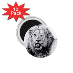 Lion Wildlife Art And Illustration Pencil 1 75  Magnets (10 Pack)