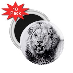 Lion Wildlife Art And Illustration Pencil 2 25  Magnets (10 Pack)
