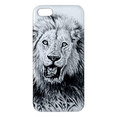Lion Wildlife Art And Illustration Pencil Apple Iphone 5 Premium Hardshell Case