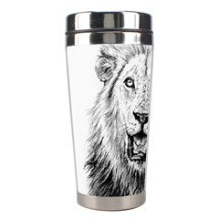 Lion Wildlife Art And Illustration Pencil Stainless Steel Travel Tumblers