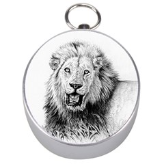 Lion Wildlife Art And Illustration Pencil Silver Compasses