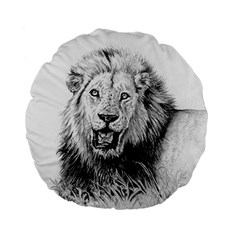 Lion Wildlife Art And Illustration Pencil Standard 15  Premium Flano Round Cushions