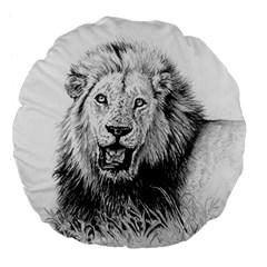 Lion Wildlife Art And Illustration Pencil Large 18  Premium Flano Round Cushions