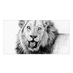 Lion Wildlife Art And Illustration Pencil Satin Shawl