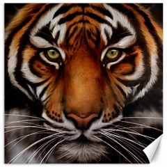 The Tiger Face Canvas 16  X 16
