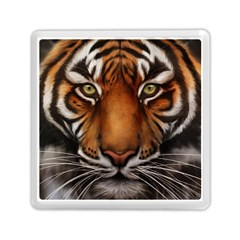 The Tiger Face Memory Card Reader (square)
