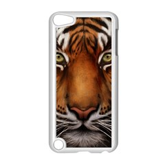 The Tiger Face Apple Ipod Touch 5 Case (white)