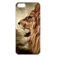 Roaring Lion Apple Iphone 5 Seamless Case (white)