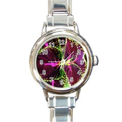 Plant Purple Green Leaves Garden Round Italian Charm Watch