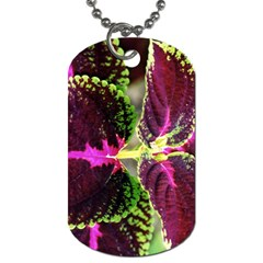 Plant Purple Green Leaves Garden Dog Tag (one Side)