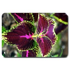 Plant Purple Green Leaves Garden Large Doormat  by Nexatart