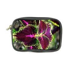 Plant Purple Green Leaves Garden Coin Purse