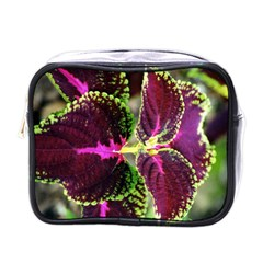 Plant Purple Green Leaves Garden Mini Toiletries Bags by Nexatart