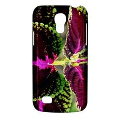 Plant Purple Green Leaves Garden Galaxy S4 Mini by Nexatart