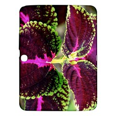 Plant Purple Green Leaves Garden Samsung Galaxy Tab 3 (10 1 ) P5200 Hardshell Case