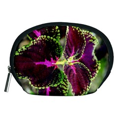 Plant Purple Green Leaves Garden Accessory Pouches (medium)  by Nexatart