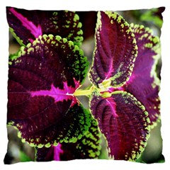 Plant Purple Green Leaves Garden Standard Flano Cushion Case (one Side)