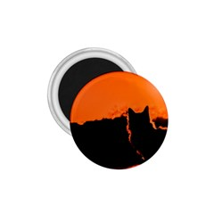 Sunset Cat Shadows Silhouettes 1 75  Magnets