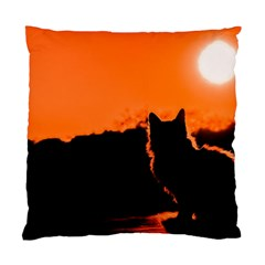 Sunset Cat Shadows Silhouettes Standard Cushion Case (two Sides)