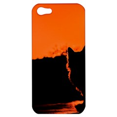 Sunset Cat Shadows Silhouettes Apple Iphone 5 Hardshell Case