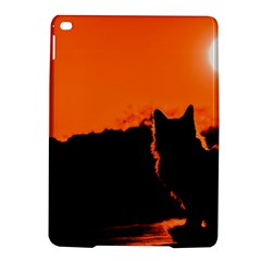 Sunset Cat Shadows Silhouettes Ipad Air 2 Hardshell Cases