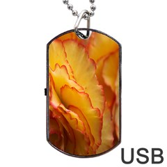 Flowers Leaves Leaf Floral Summer Dog Tag Usb Flash (two Sides)
