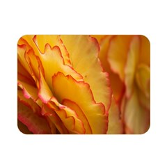 Flowers Leaves Leaf Floral Summer Double Sided Flano Blanket (mini)