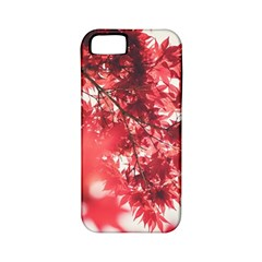 Maple Leaves Red Autumn Fall Apple Iphone 5 Classic Hardshell Case (pc+silicone) by Sapixe