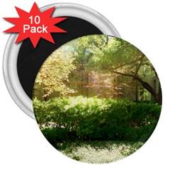 Highland Park 19 3  Magnets (10 Pack)