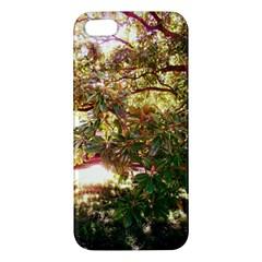 Highland Park 18 Apple Iphone 5 Premium Hardshell Case