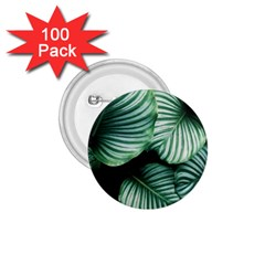 Tropical Florals 1 75  Buttons (100 Pack)  by goljakoff