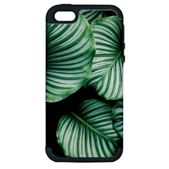 Tropical Florals Apple Iphone 5 Hardshell Case (pc+silicone) by goljakoff