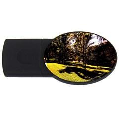 Highland Park 17 Usb Flash Drive Oval (2 Gb)