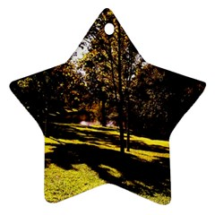 Highland Park 17 Star Ornament (two Sides)
