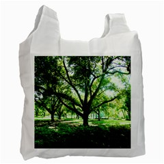 Highland Park 14 Recycle Bag (one Side)