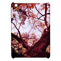 Highland Park 12 Apple Ipad Mini Hardshell Case