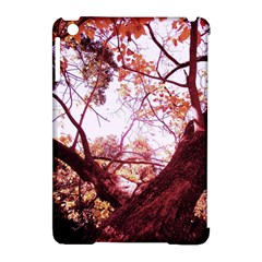 Highland Park 12 Apple Ipad Mini Hardshell Case (compatible With Smart Cover)