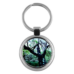 Highland Park 11 Key Chains (round)
